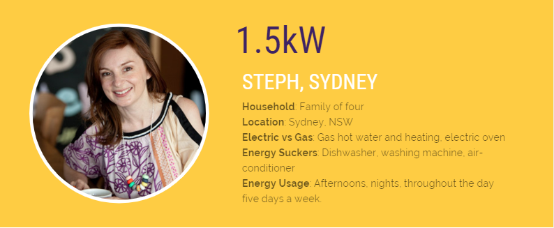 Solar Analytics case study of a home with a small solar system and heavy shading