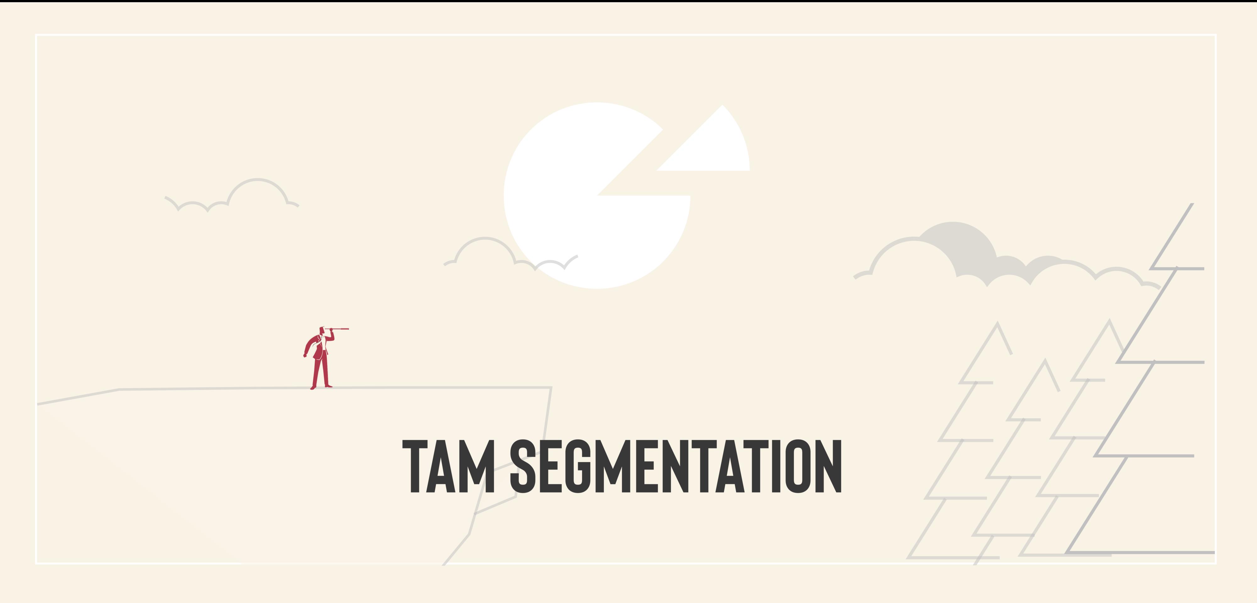tam segemntation