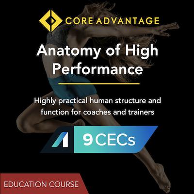 Anatomy For High Performance