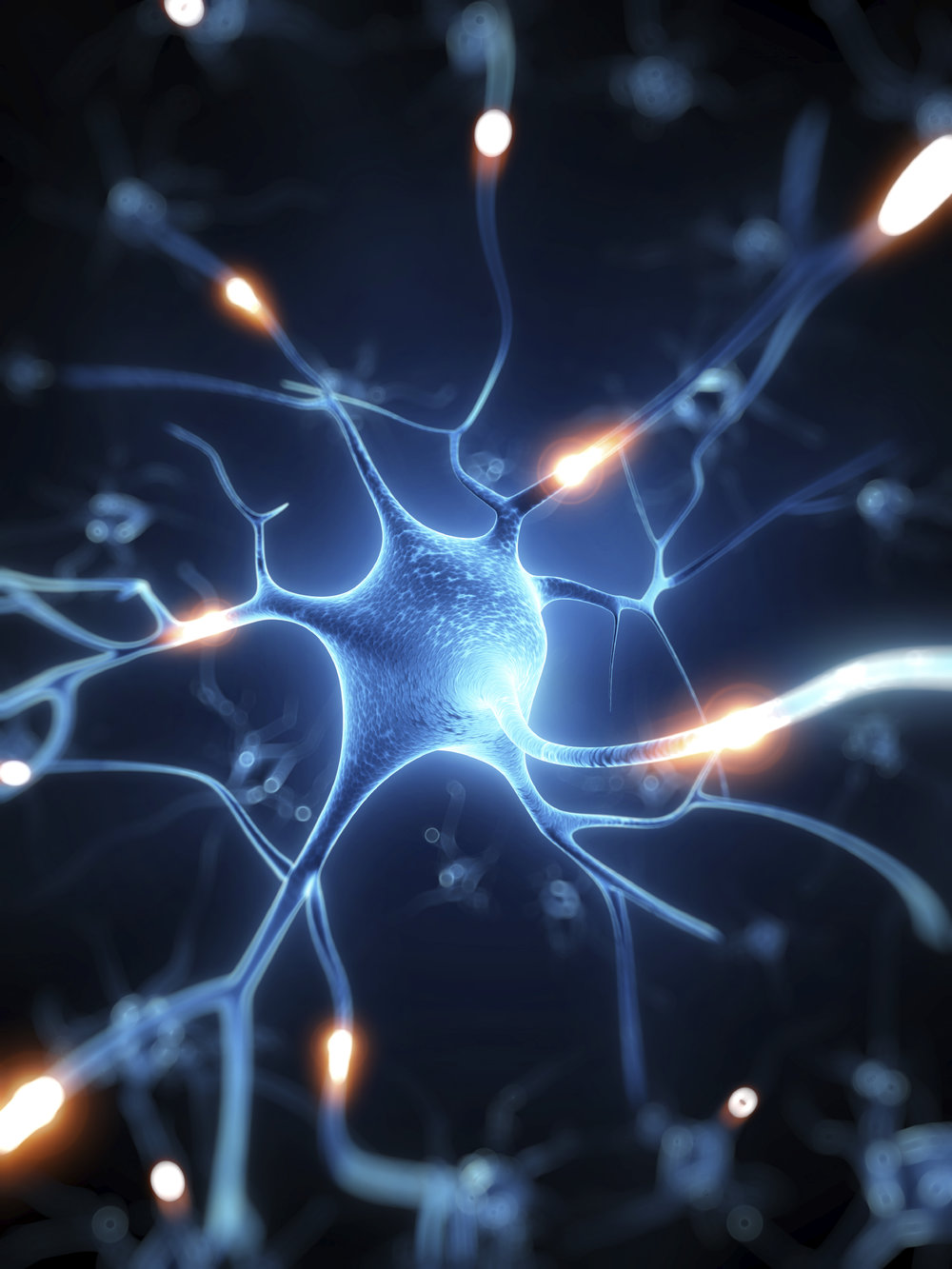 The nervous system drives everything, so when does it get its rest day?