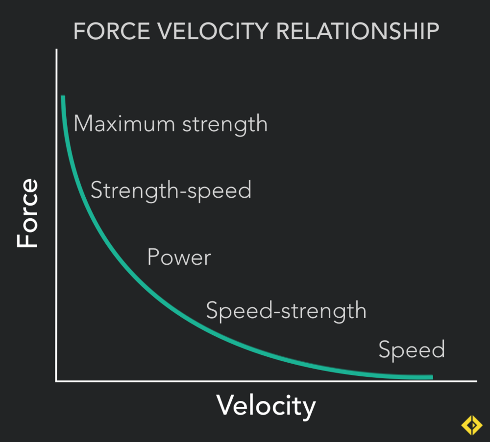 """""""Surfing the Curve"""" - Training should work all movement velocities for all round athletic development"""