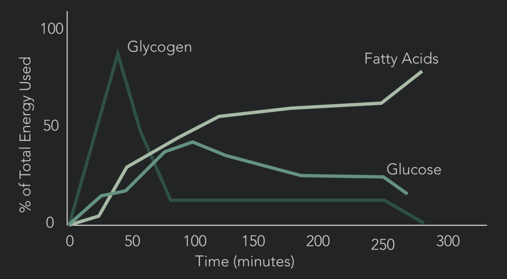 Glycogen is a finite resource, run out and high powered explosive work becomes very very hard to do.