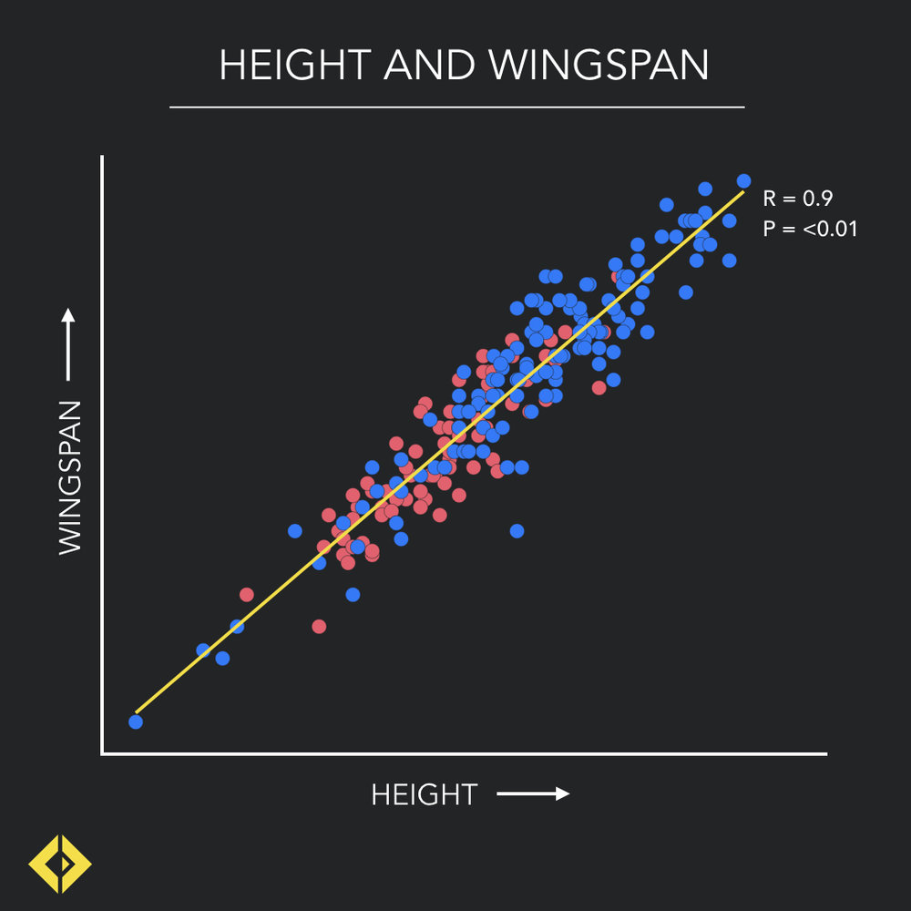 correlations.003.jpeg