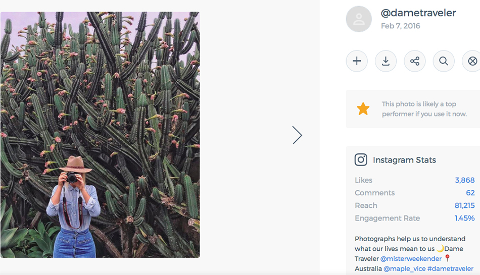 anthropologie brand identity, free people instagram, urban outfitters social media strategy, content strategy, social media, computer vision, best performing content, free people top content cacti