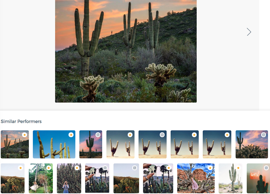 anthropologie brand identity, free people instagram, urban outfitters social media strategy, content strategy, social media, computer vision, best performing content, top cactus posts free people