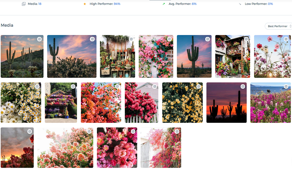 anthropologie brand identity, free people instagram, urban outfitters social media strategy, content strategy, social media, computer vision, best performing content, free people floral cactus posts