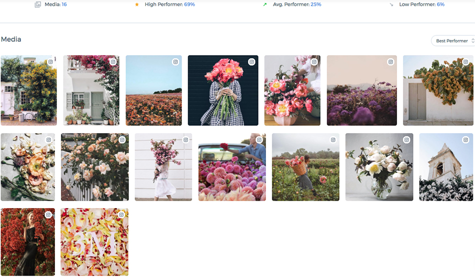 anthropologie brand identity, free people instagram, urban outfitters social media strategy, content strategy, social media, computer vision, best performing content, anthropologie flora