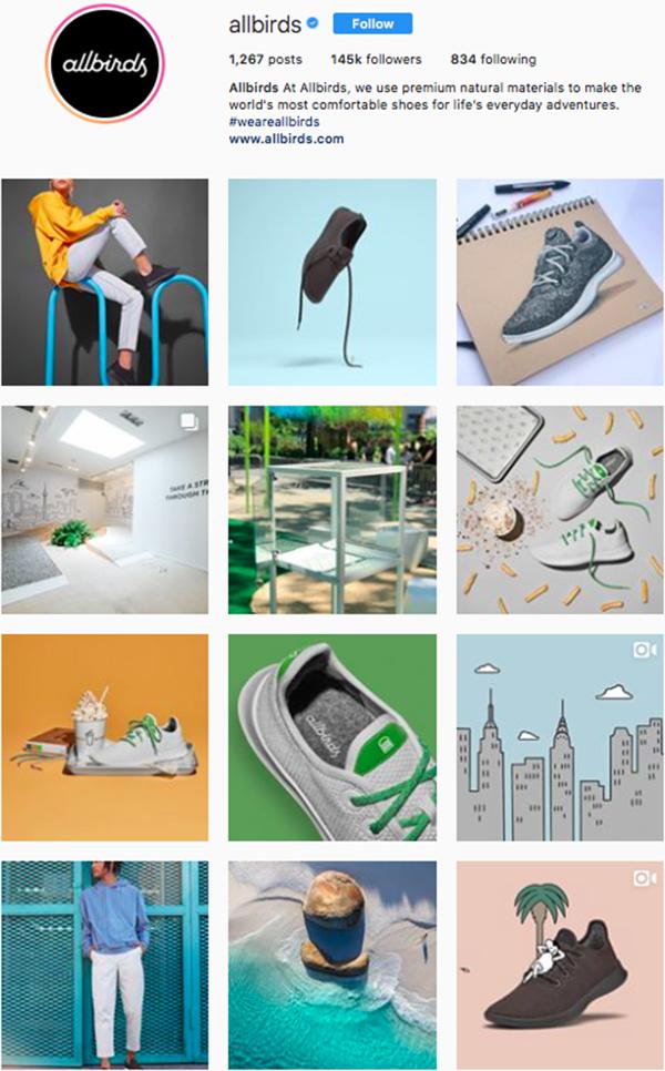 best shoe brands on instagram, all birds