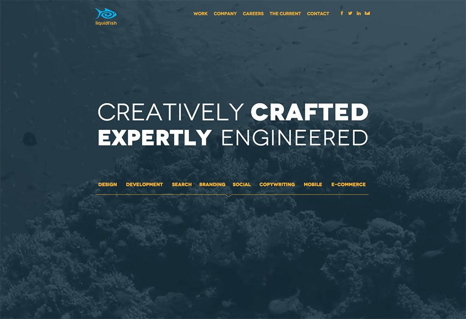 Liquidfish Website