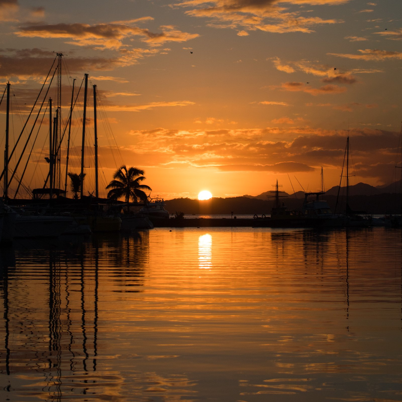 silhouette of boats on calm body of water during sunset