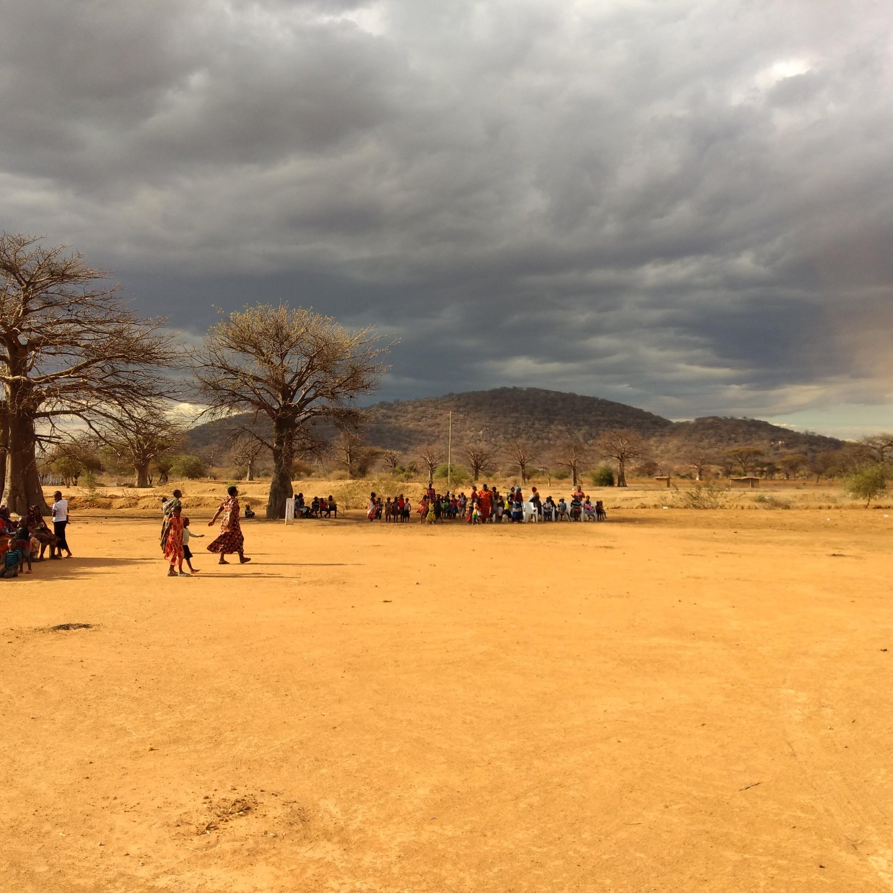 people on brown field near trees under cloudy sky during daytime