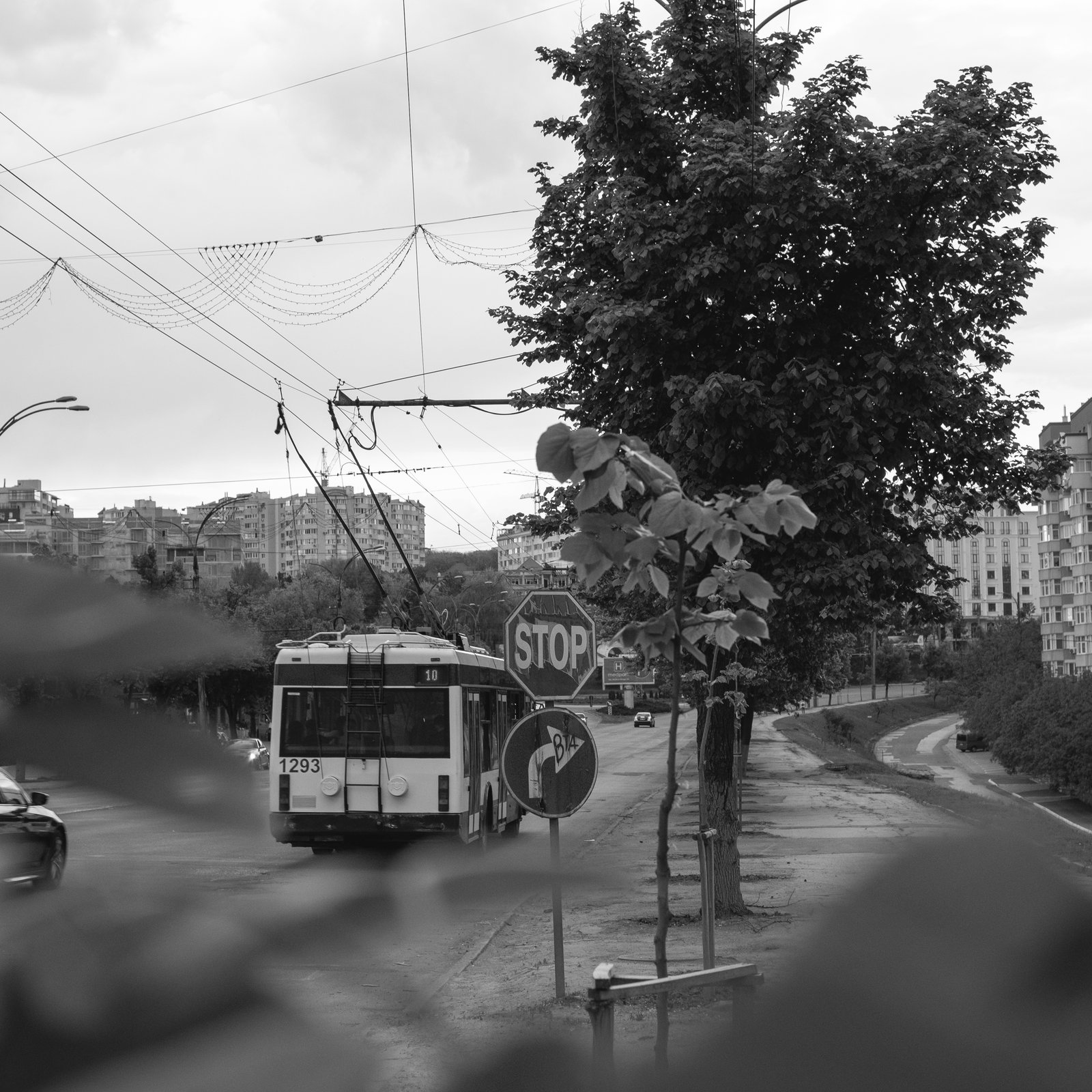 grayscale photo of bus on road