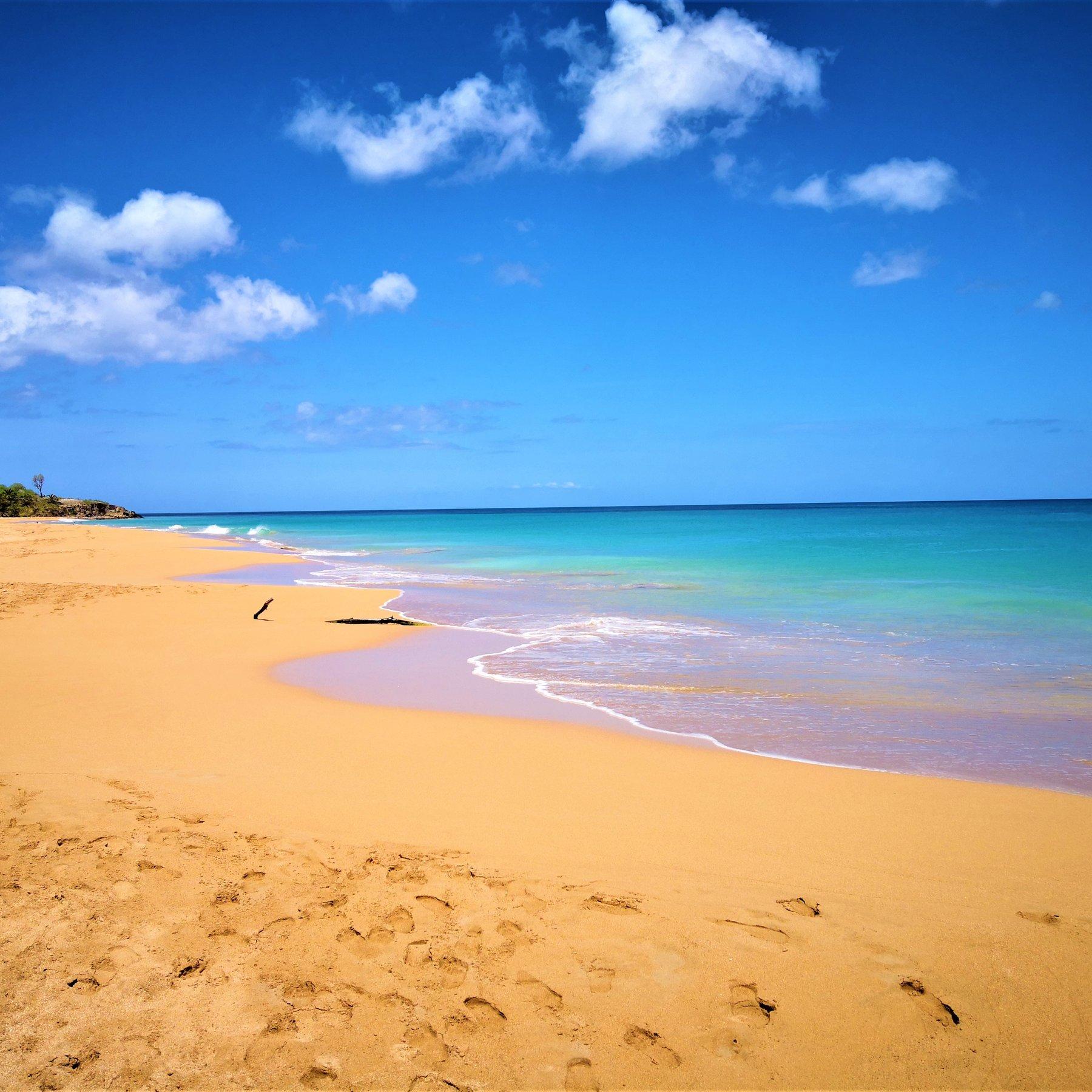beach shore under blue sky during daytime