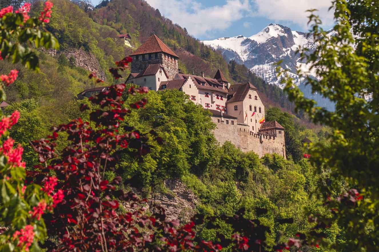 Vaduz Castle in Spring after rain