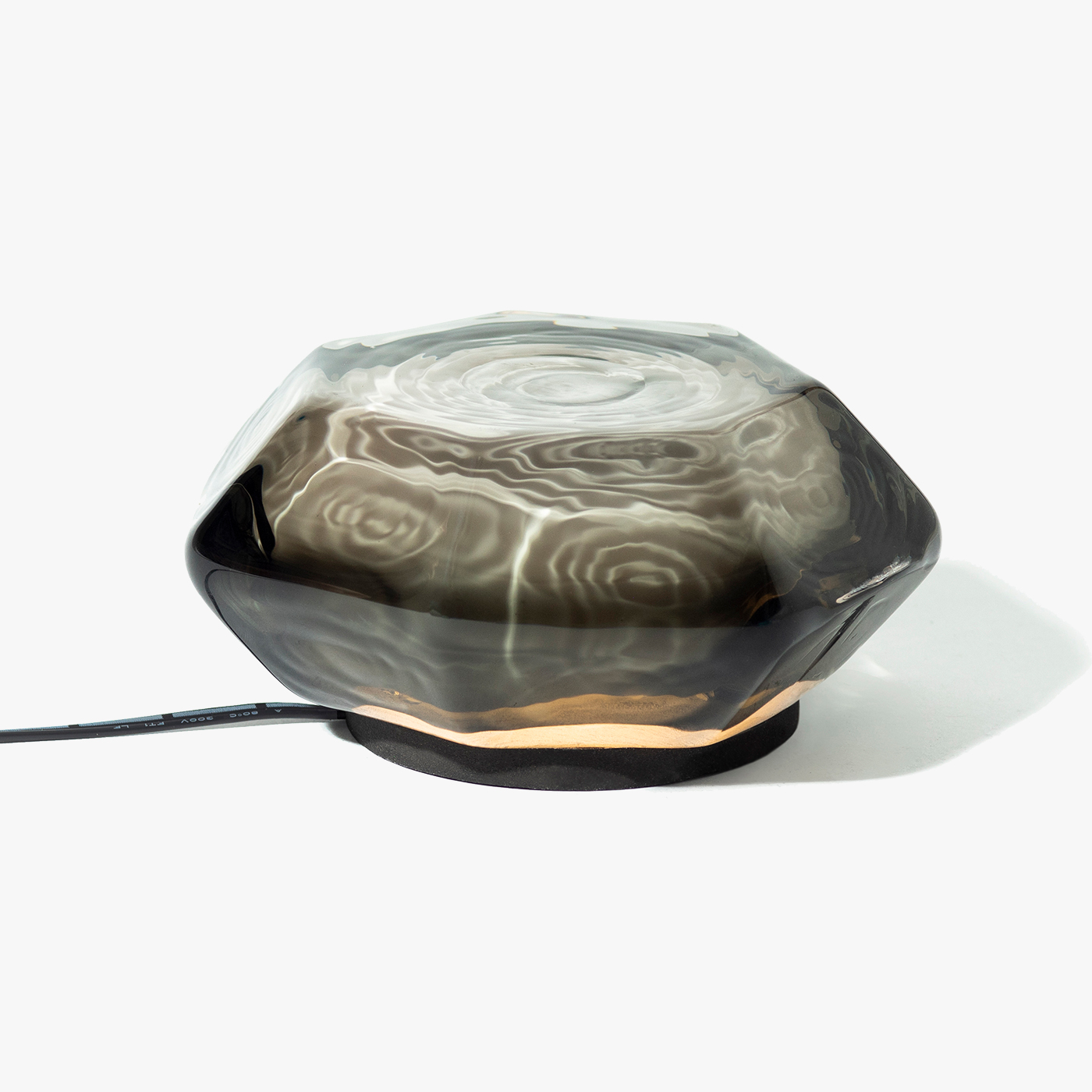 Mollusk Table Light