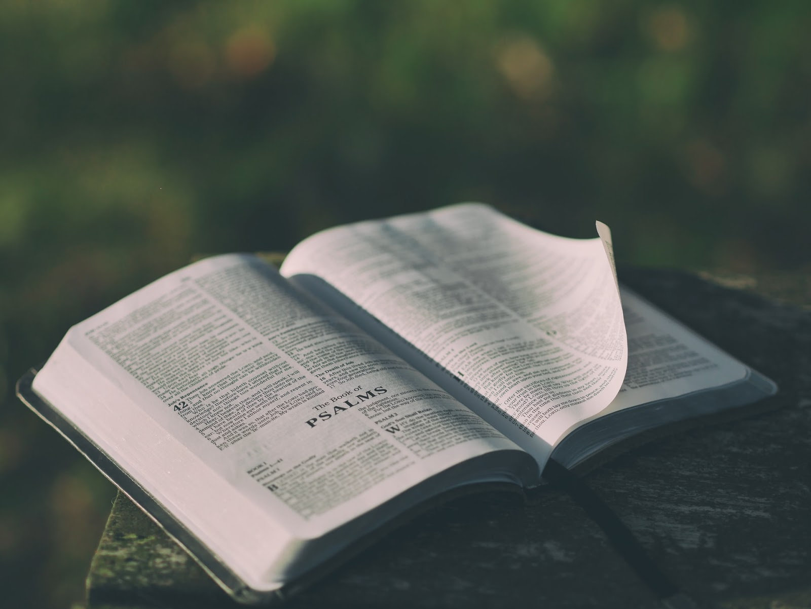 a Bible open to the book of Psalms