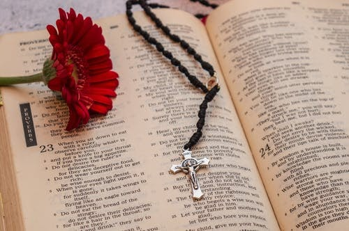 Cross necklace and a flower sit on the Bible