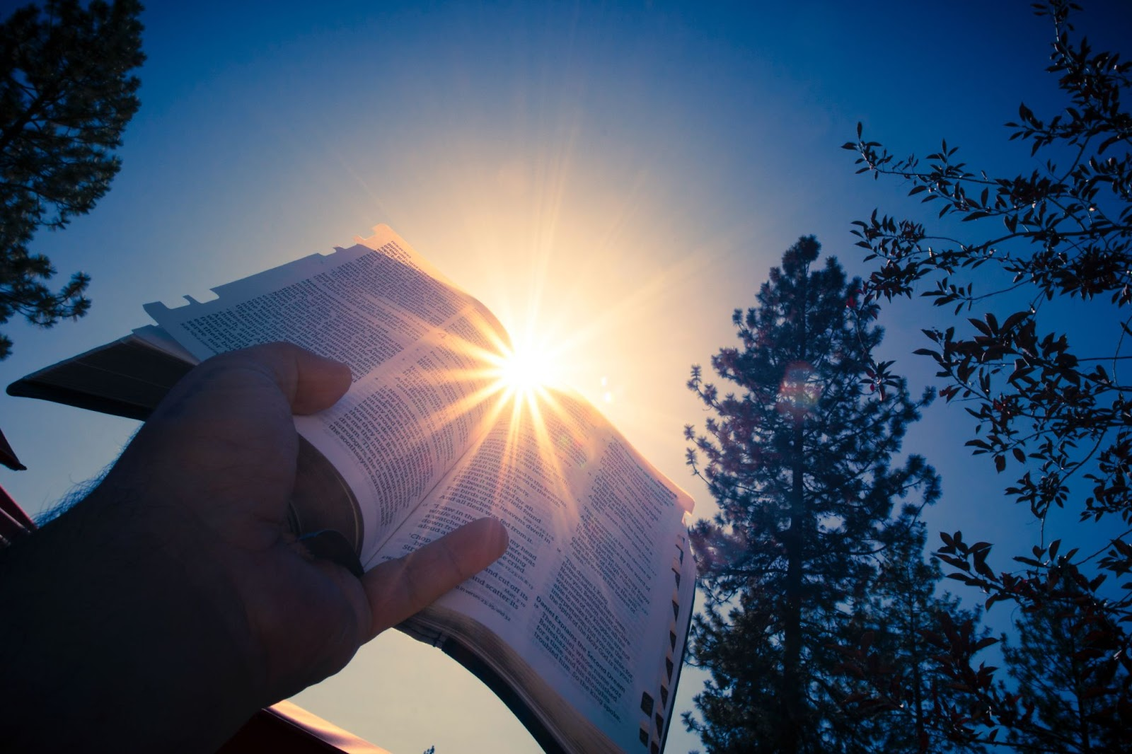 person holding Bible up to the sun