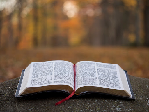 Learn about the book of Judges with pray.com