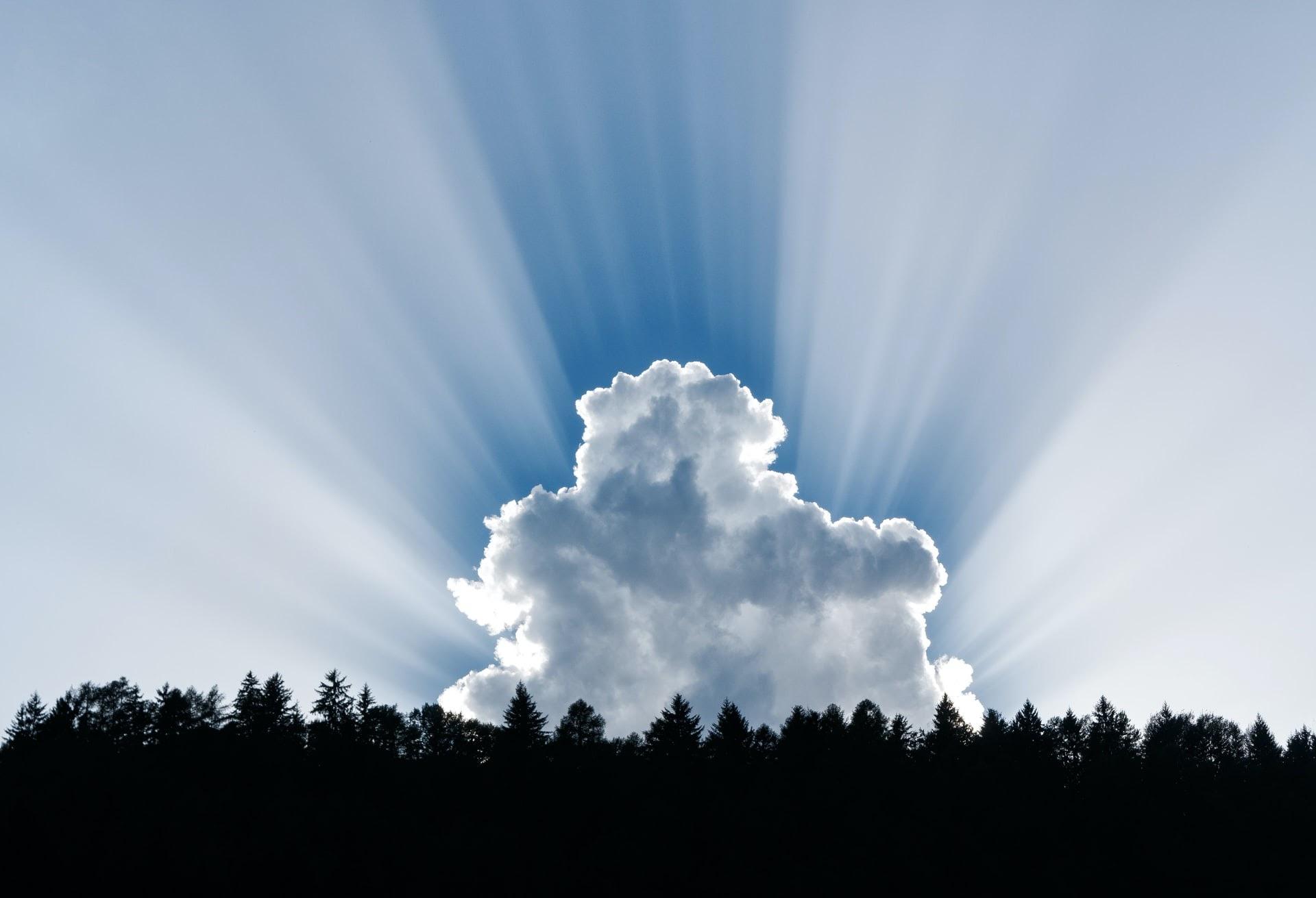 a cloud raising over treetops