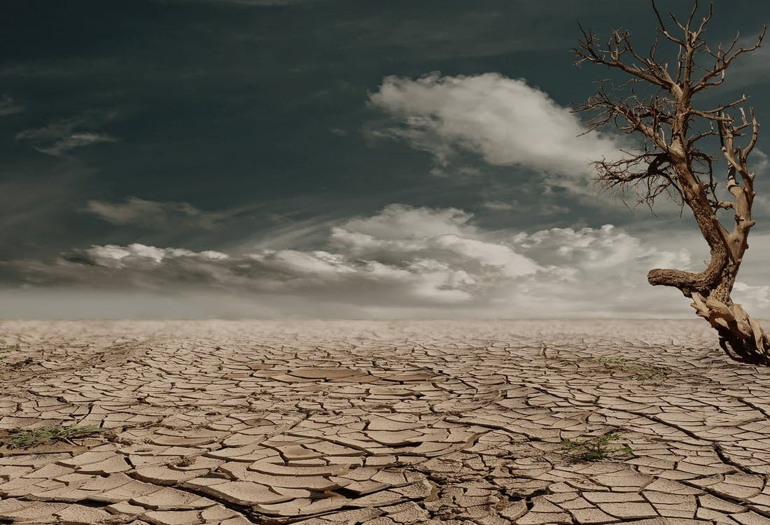Pray for Rain Campaign to Support Small Family Farms Impacted by Historic Western Droughts