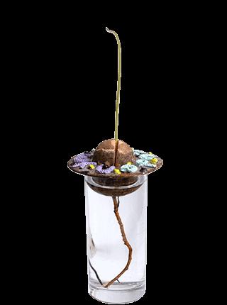 Glazed stoneware avocado pit planter, Pseudonym Objects for Everyday Living.