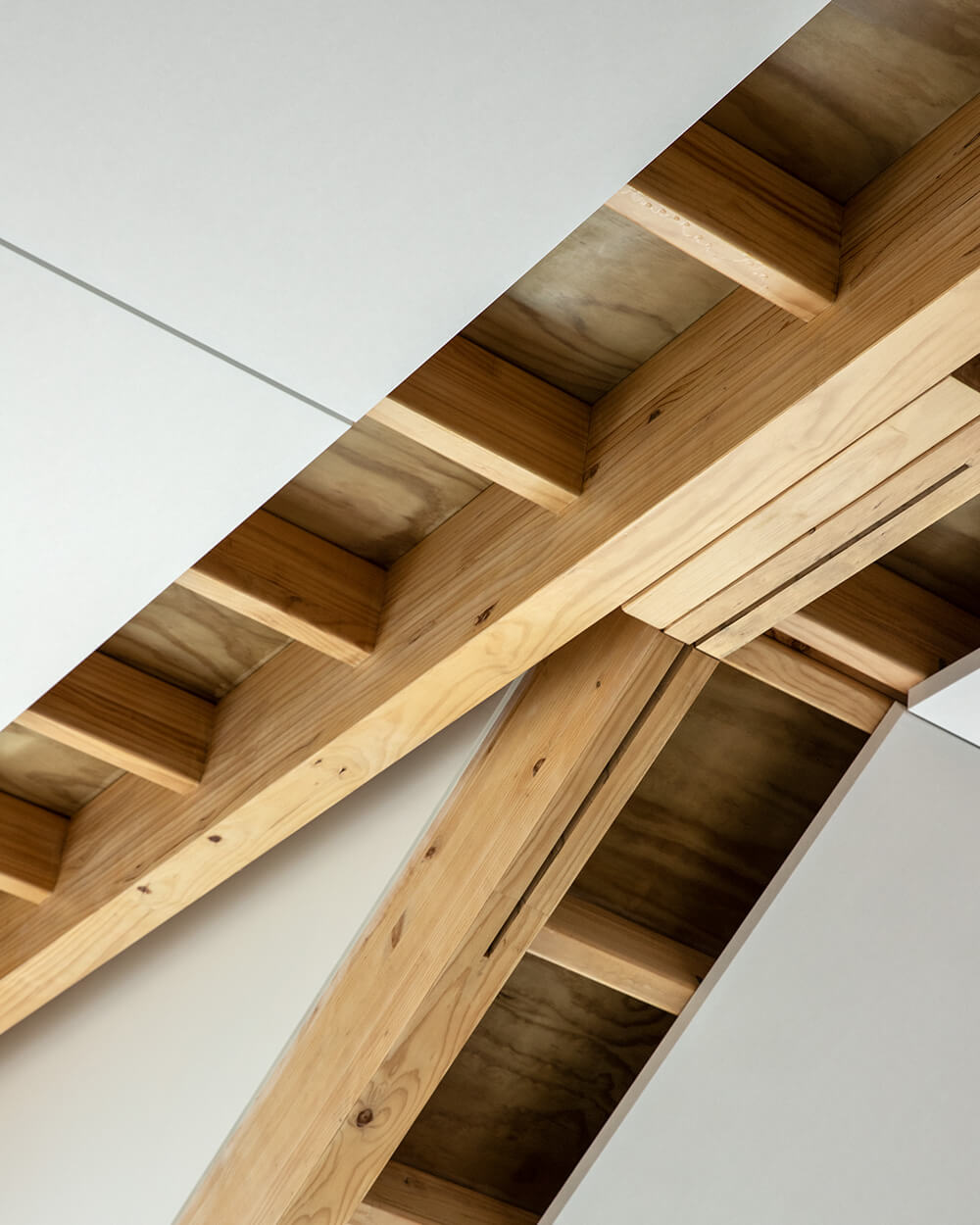 Exposed timber roof portals