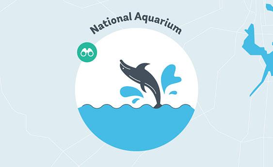national aquarium graphic