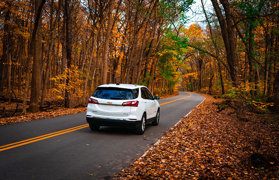 white car driving in fall foliage