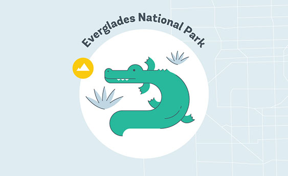 everglades national park graphic