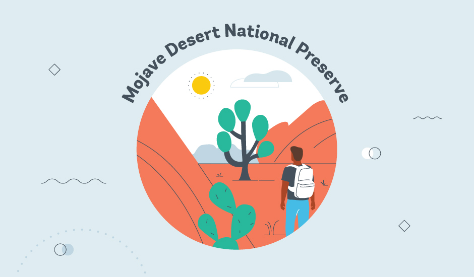 Mojave Desert National Preserve graphic