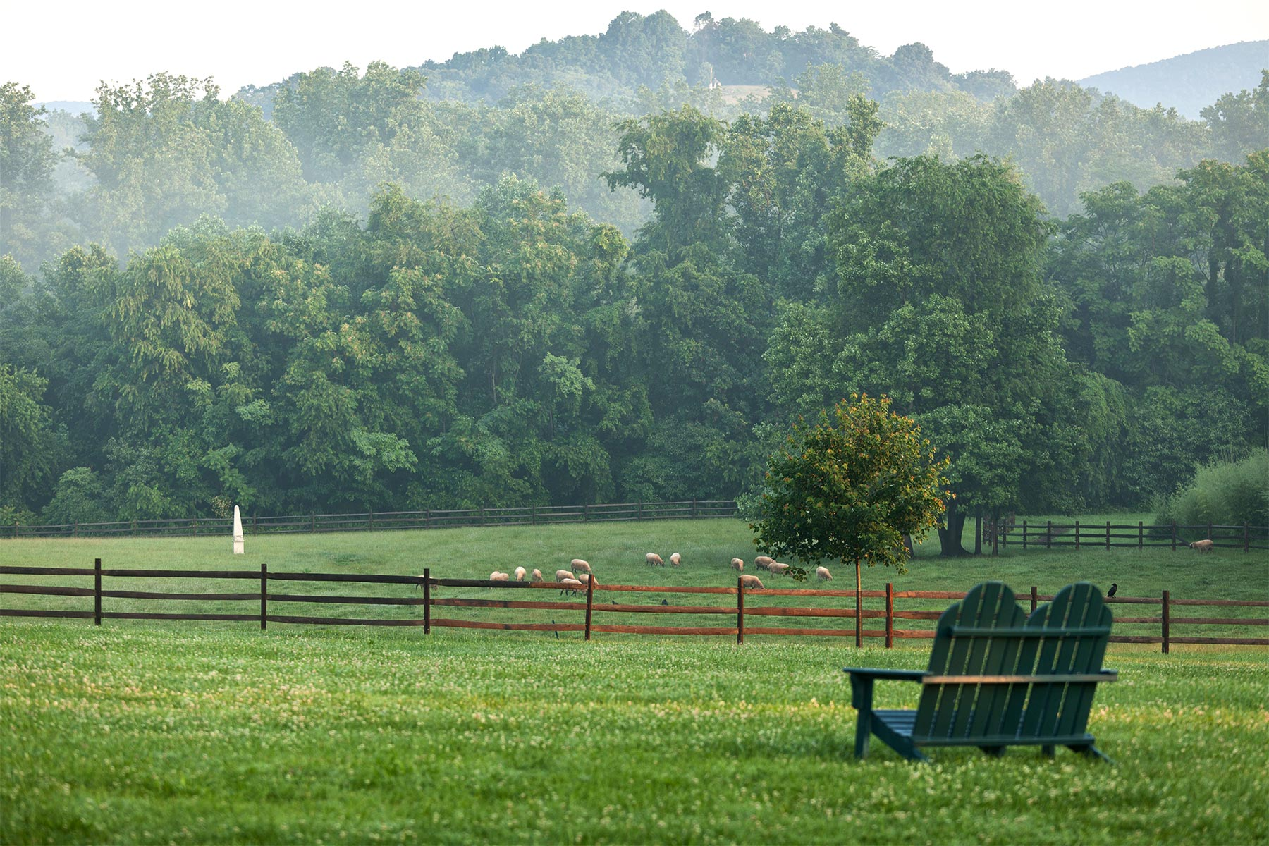 Misty mountains overlooking the field of dreams.