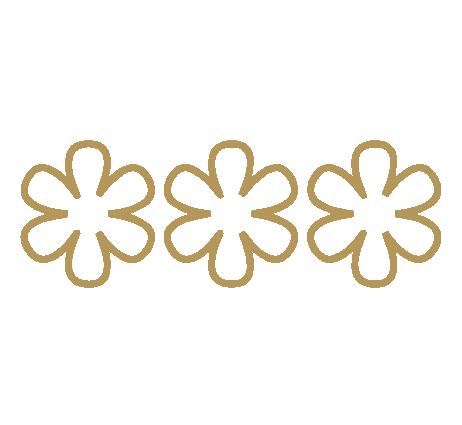 3 Michelin star logo.