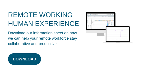 REMOTE WORKING HUMAN EXPERIENCE (1)