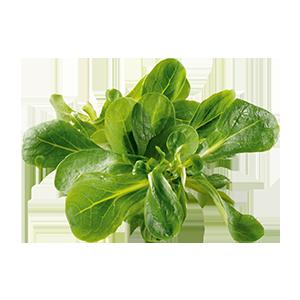 Feldsalat 150 g