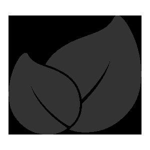 Apfel-Holunder-Saft