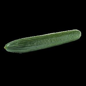 Bio Salatgurken