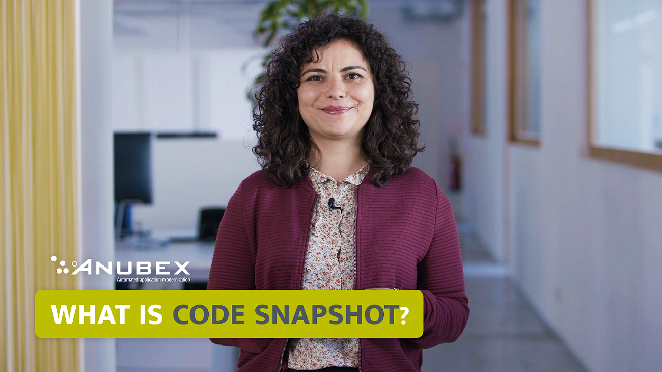 What Is a Code Snapshot?