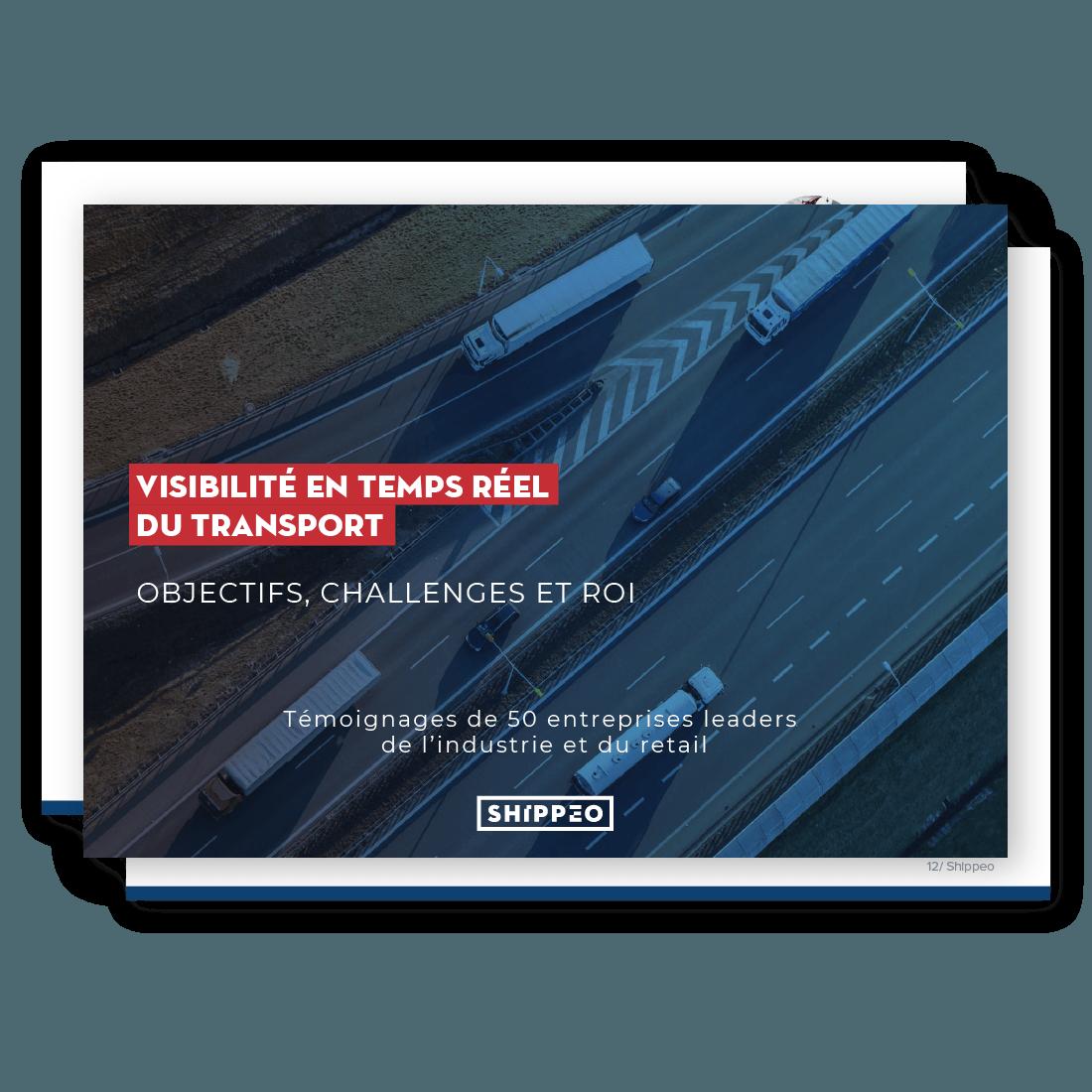 Livre blanc Visibilité Supply Chain en Temps Réel