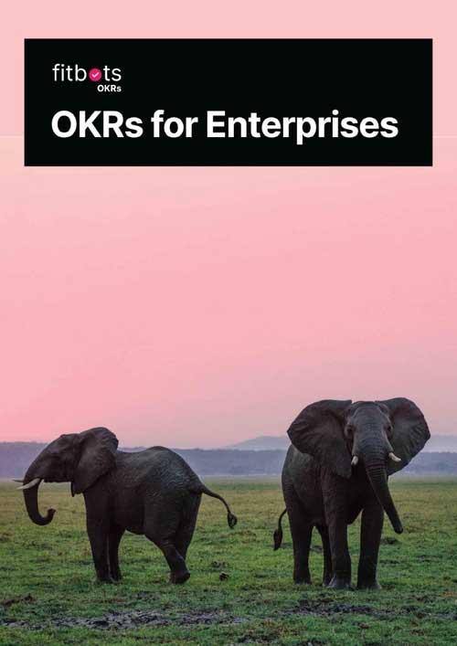 OKRs for Enterprises: Higher performance for greater goals