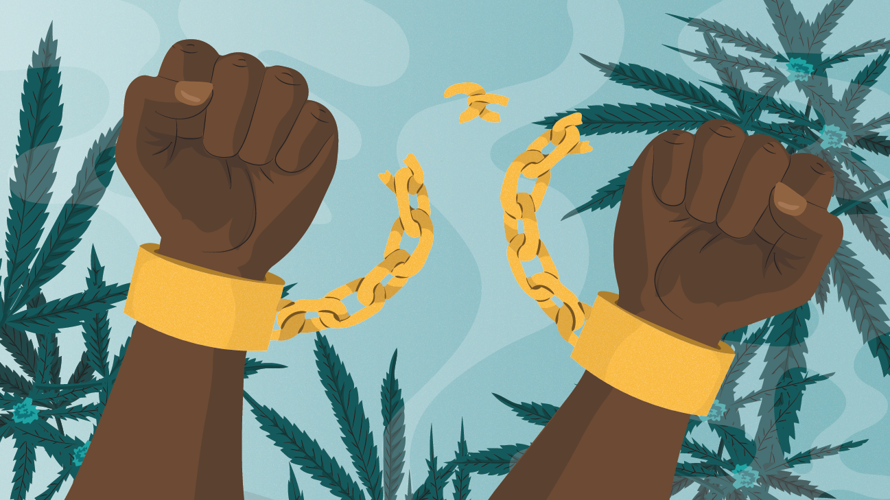 The Beginner's Guide to Social Equity in Cannabis