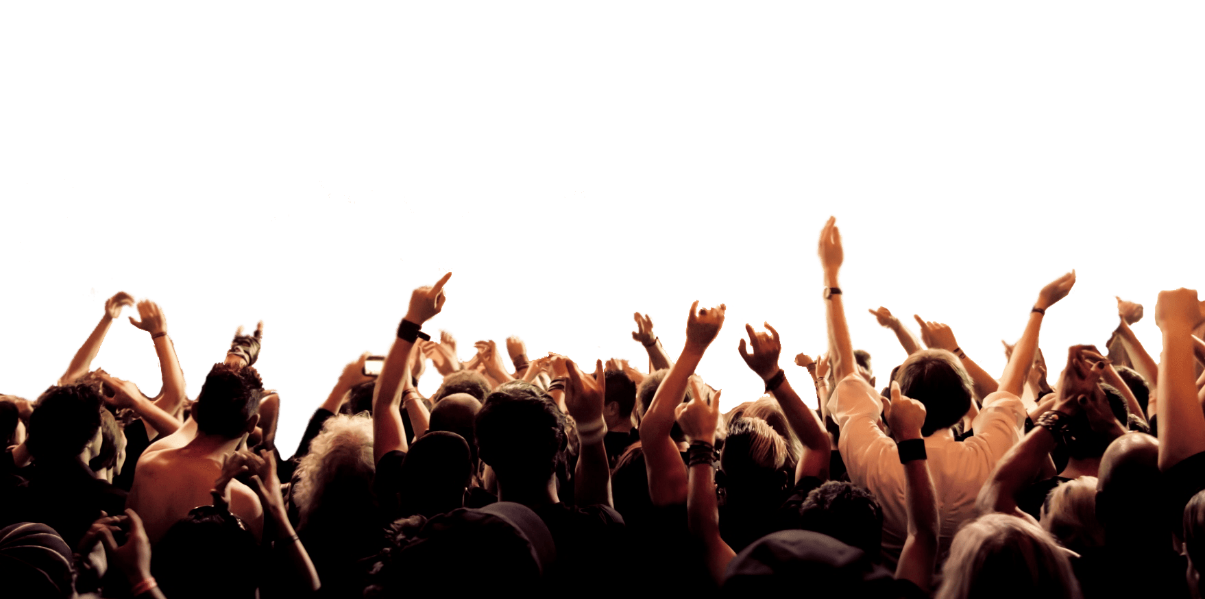 A Crowd Cheering for a Basketball Game