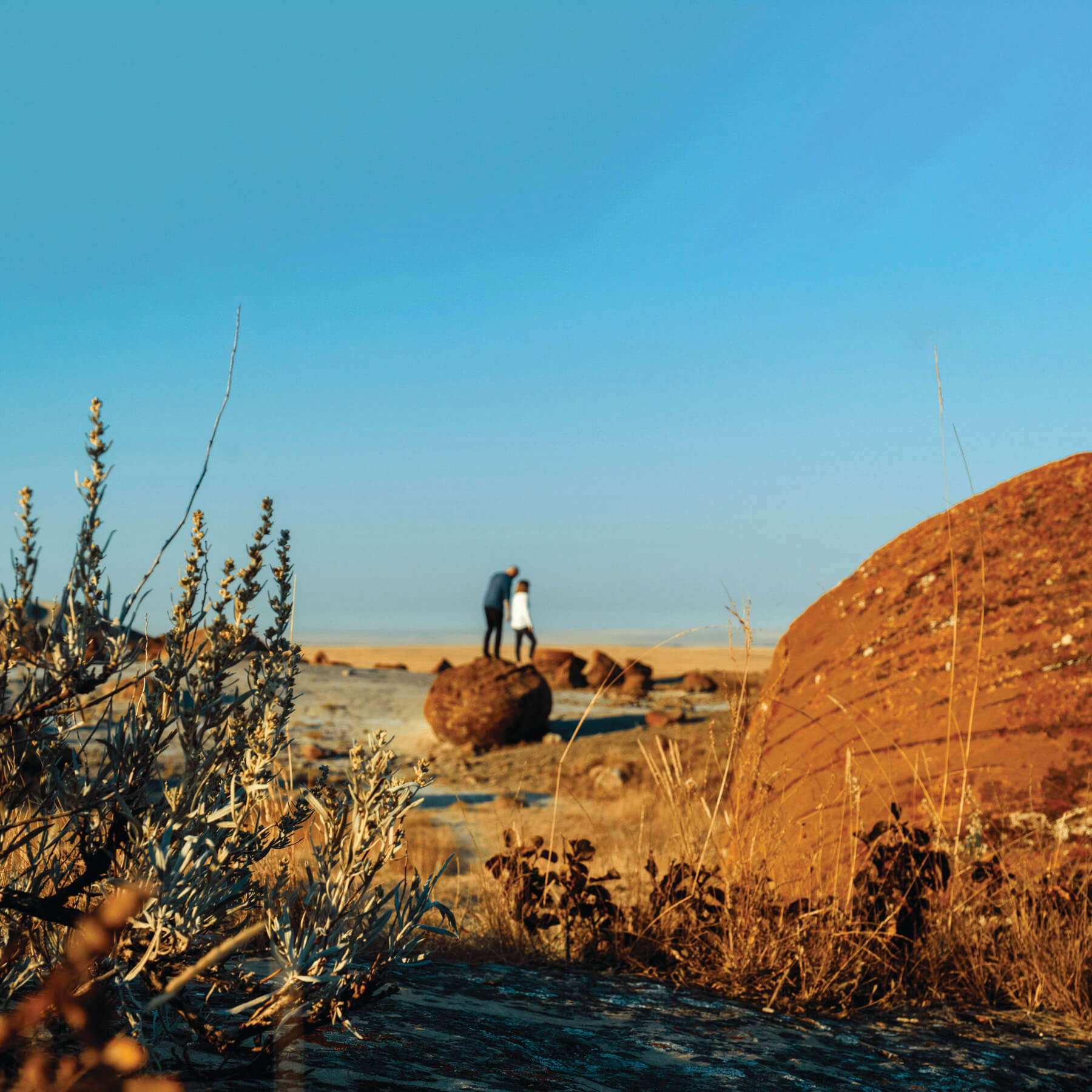 Red Rock Coulee offers badlands, hard sandstone capped hoodoos and large, round, red boulders.