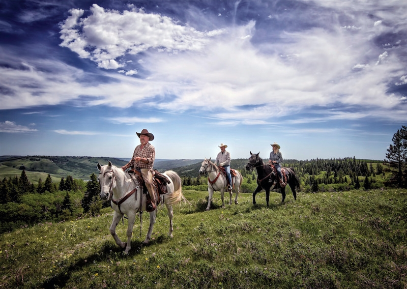 A group rides horses through the winding trails at Cypress Hills Interprovincial Park.
