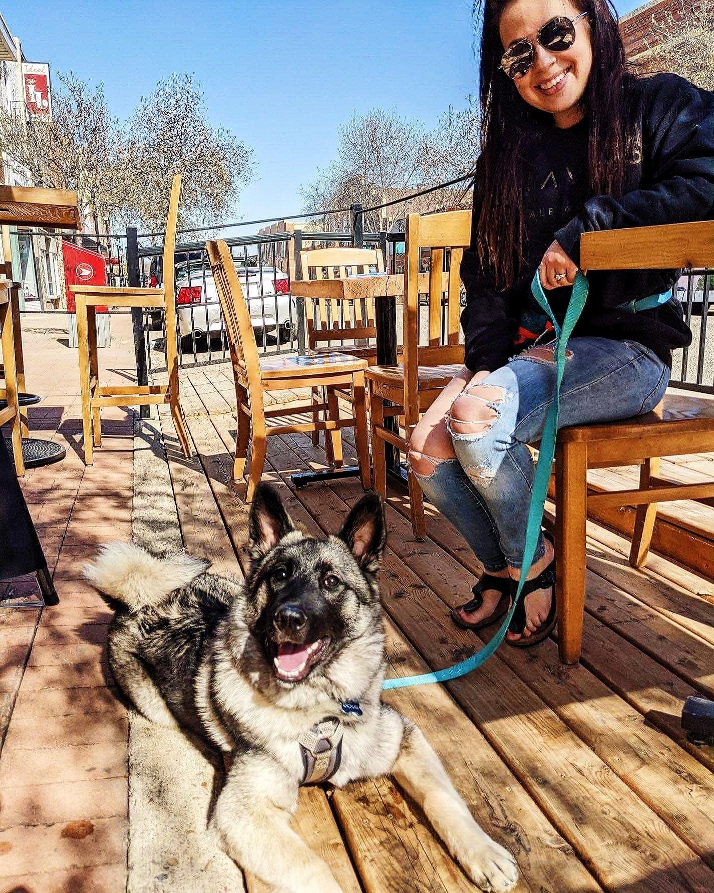 Dog Friendly Patio at Travois