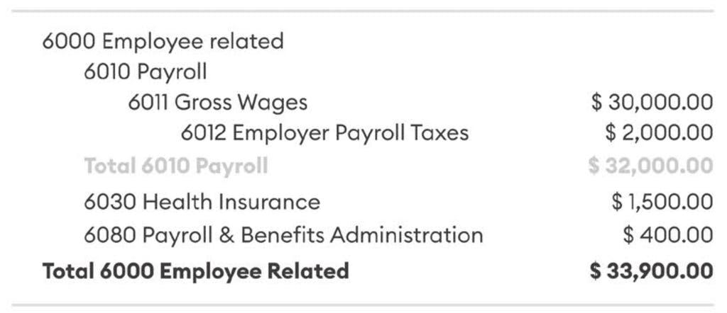 Payroll profit and loss statement