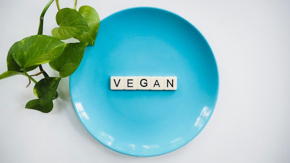 Provenance's guide to understanding 'Vegan'