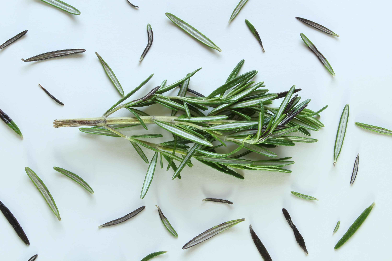 Rosemary- herbs for hair growth