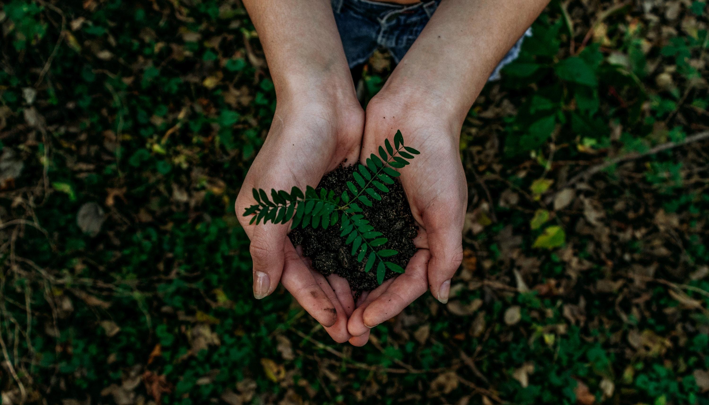 Seguramente habrás escuchado hablar de energía verde a muchas compañías. Te contamos exactamente de qué va la energía verde y cuáles son sus beneficios.