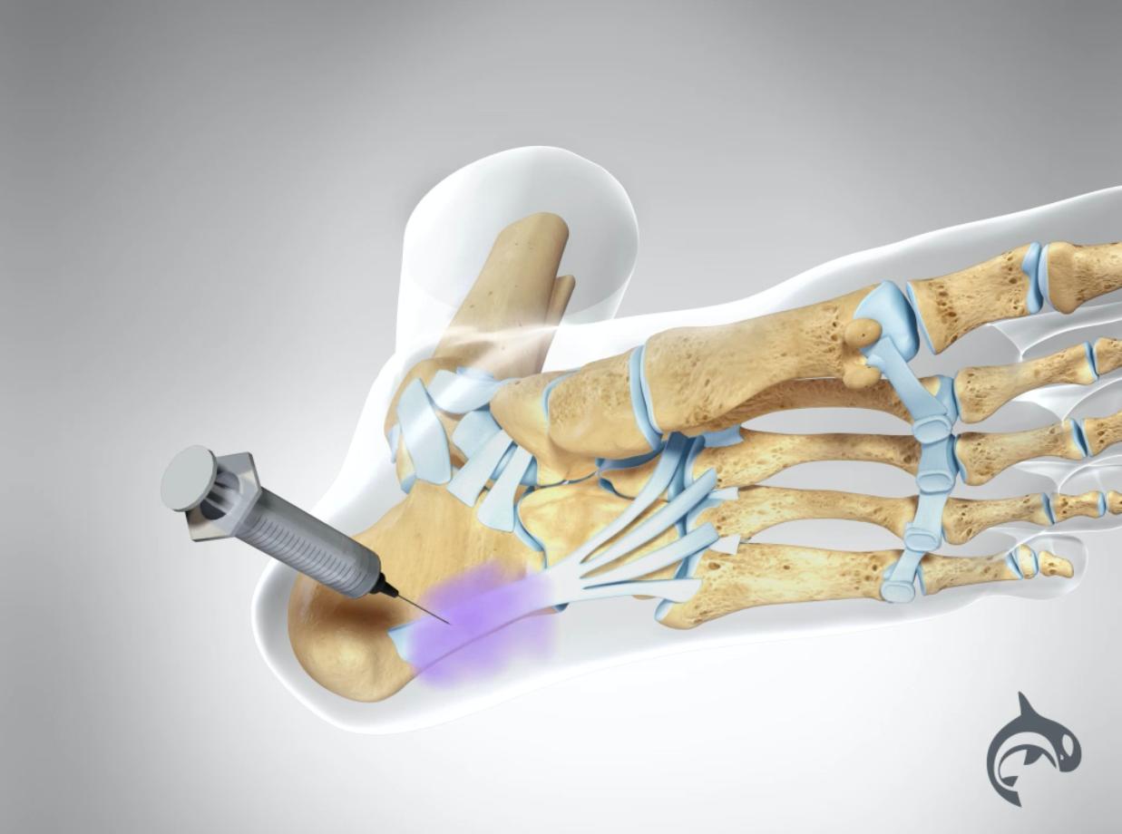 The Future of Directional Orthopedics™